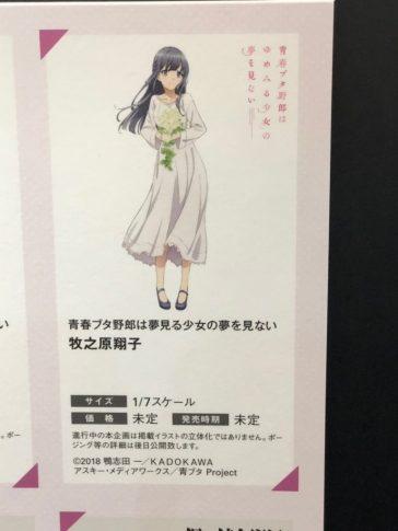 Makinohara Shouko (Seishun Buta Yarou wa Bunny Girl Senpai no Yume wo Minai) - Aniplex+